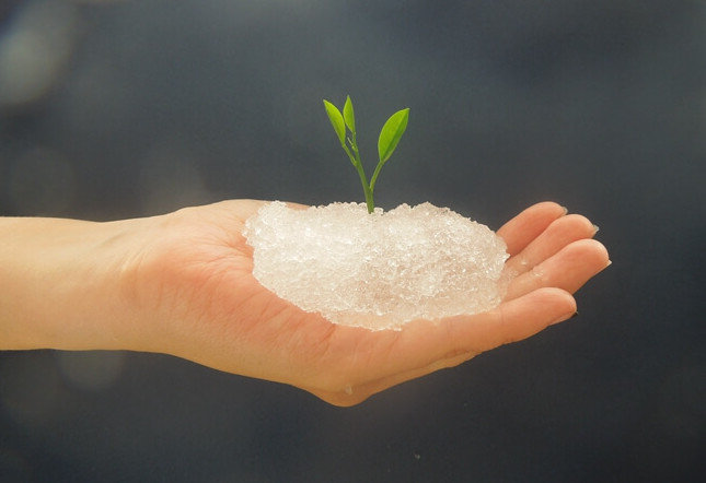 Water Retaining Plants : Top sodium polyacrylate applications functions super